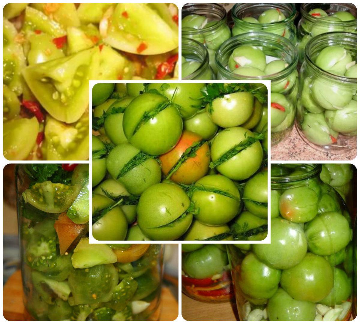 collage зеленые томаты