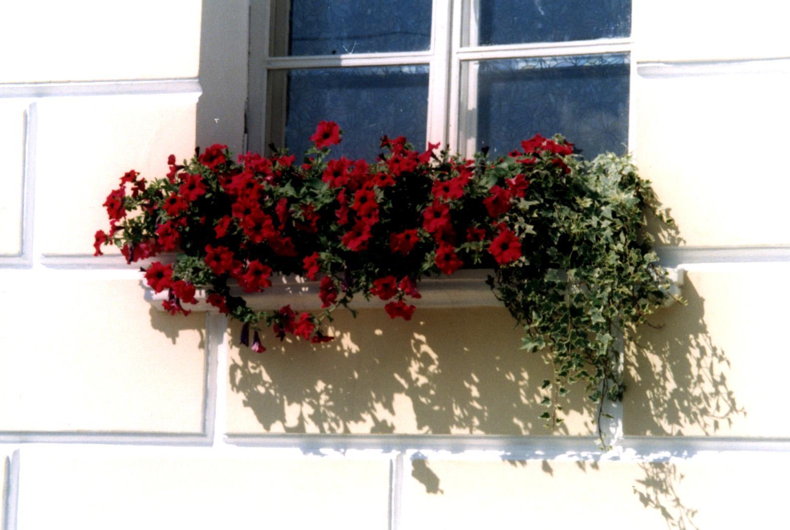балконный ящик