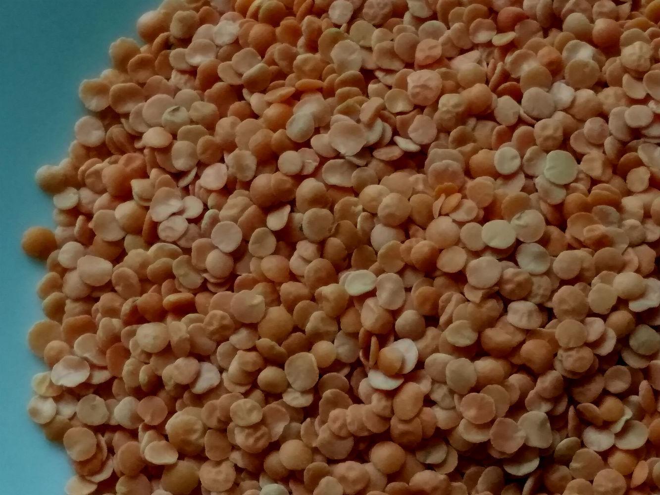 Суп-пюре и секреты красной чечевицы