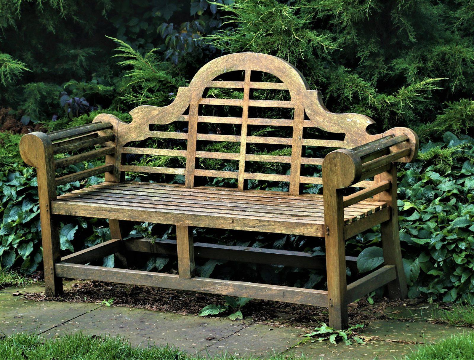 Госпожа скамейка